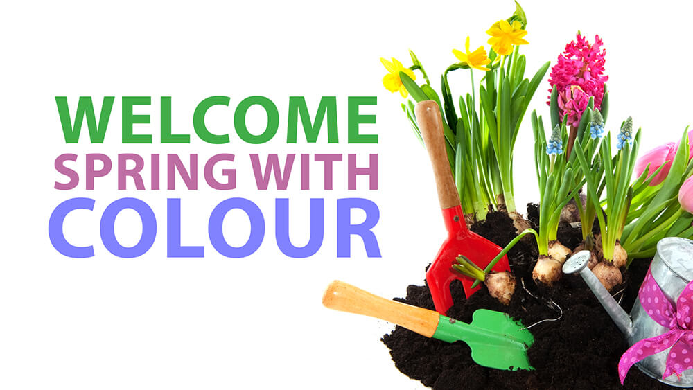 Welcome Spring With Colour
